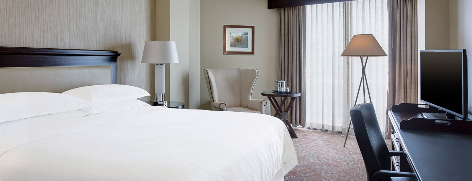 Traditional Rooms | Sheraton Houston Brookhollow Hotel
